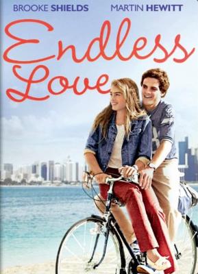Endless Love วุ่นรักไม่รู้จบ (1981)