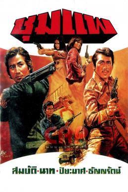ชุมแพ 2519 (1976)